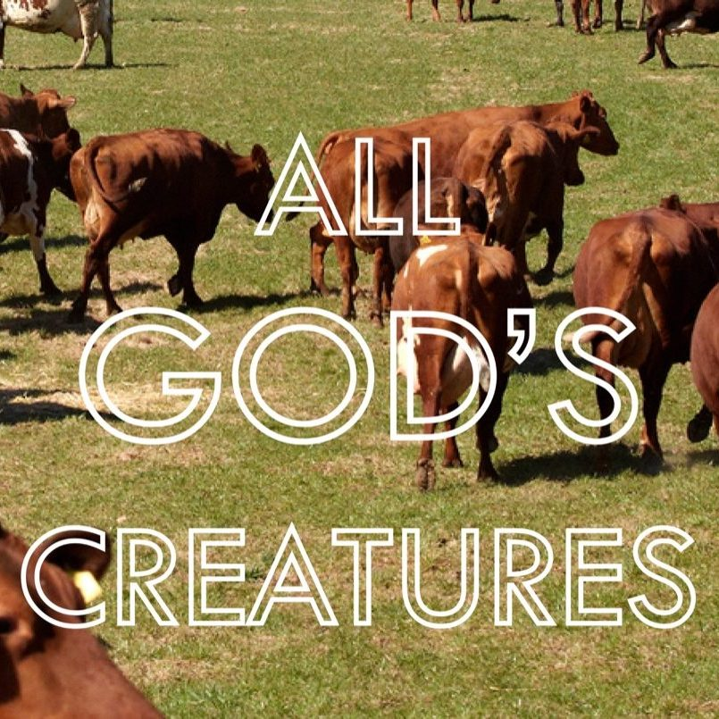 All Gods creatures banner
